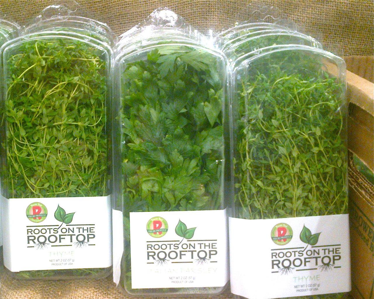 Roots On The Rooftop! – Recirculating Farms Coalition