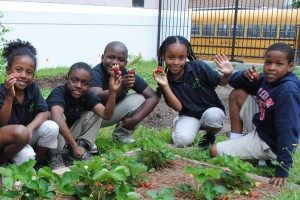 cropped kids in garden w strawberries (1)